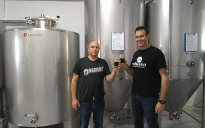 4Alqueries, la primera marca de cerveza mallorquina que elabora con certificación ecológica.